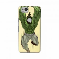 Buy Google Pixel 2 Trainer Mobile Phone Covers Online at Craftingcrow.com