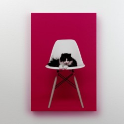 Buy High Quality Designer Canvas Online at Craftingcrow.com
